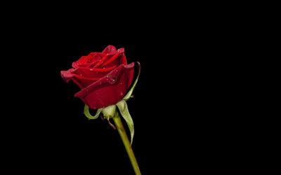سابلیمینال جذب رابطه دلخواه